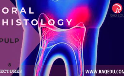 Oral histology / Pulp